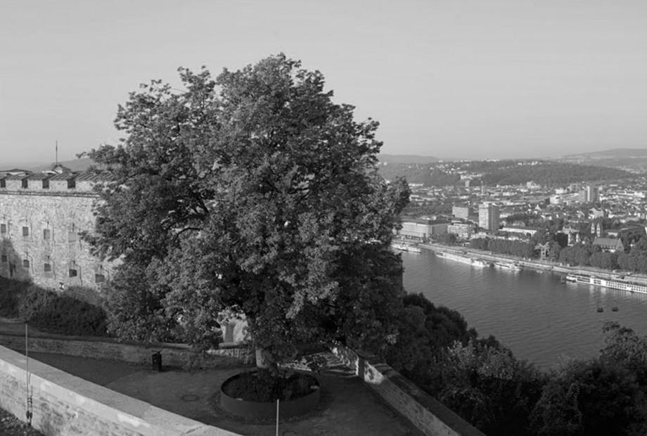 Festung Ehrenbreitstein Bild #2